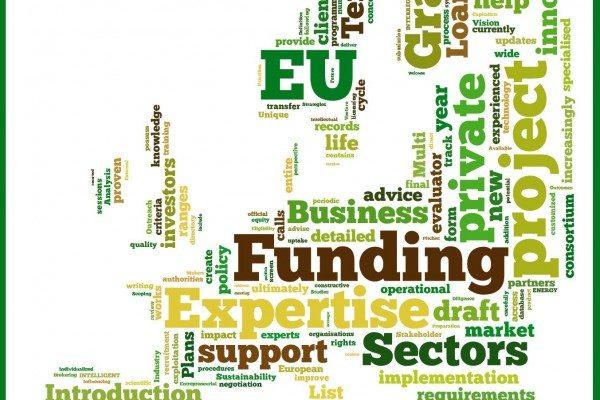 What is the Erasmus Internship Program?