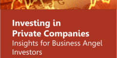 Investing in Private Companies – Insights for Business Angel Investors